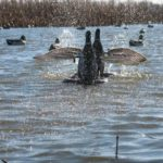 2012_southern_illinois_duck_hunt4